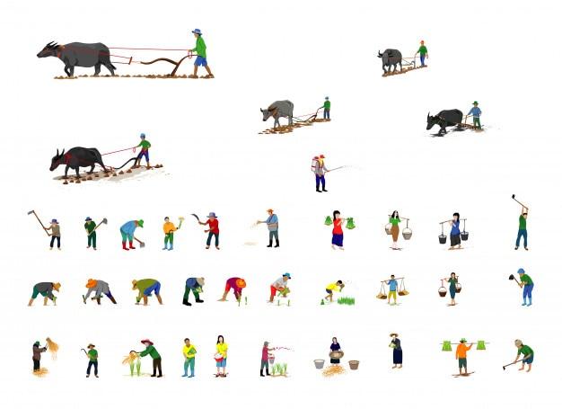 農家の漫画の形ベクトル設計