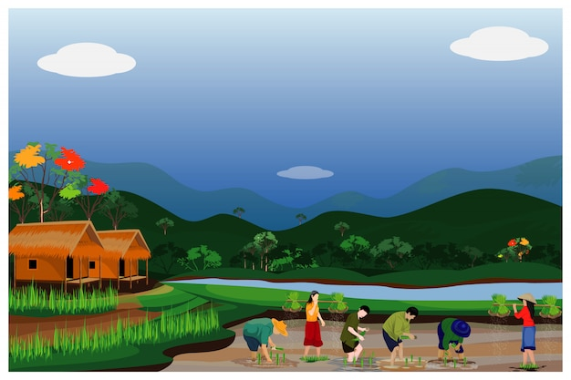 水田のベクトルのデザインで農家移植稲