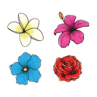 熱帯の花のベクトルの手描きイラスト
