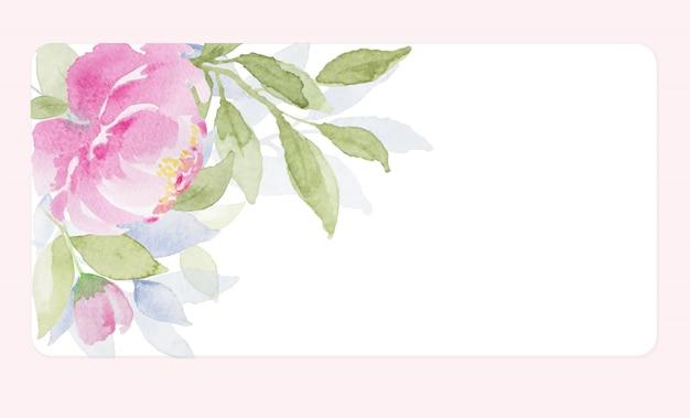 Красивые мягкие тона розового цветка акварелью на белом фоне
