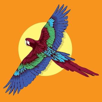 美しいイラスト熱帯の鳥動物