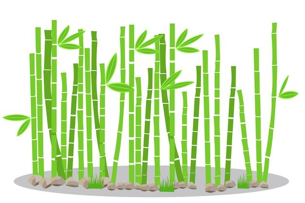 Бамбуковый завод