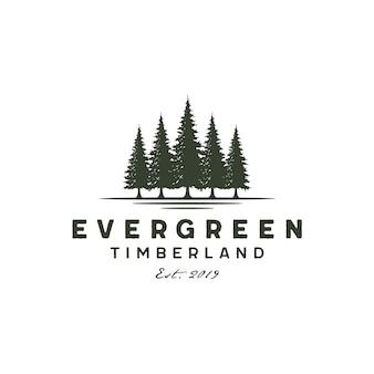 素朴なビンテージ常緑樹、松、トウヒ、杉の木のロゴ