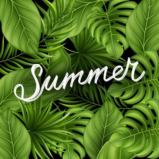 ジャングル植物のある夏の背景
