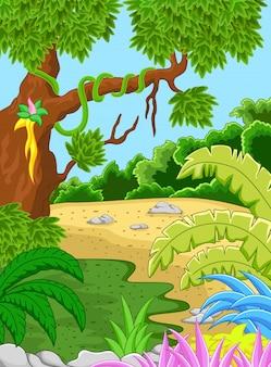自然の森の背景