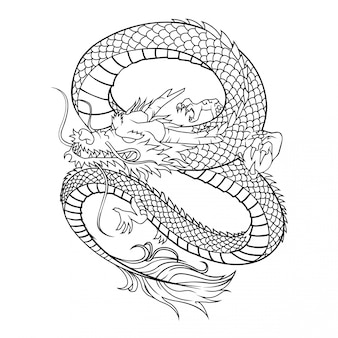白い背景の上のドラゴンベクトル図