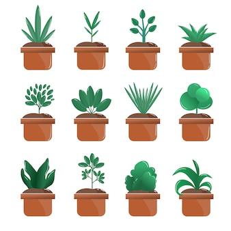 庭の鉢植えの緑の植物セットのコレクション