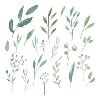 Зеленые листья акварель большой набор коллекции украшение для свадебного приглашения