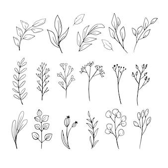 手描きの葉ラインアート飾りセットコレクション