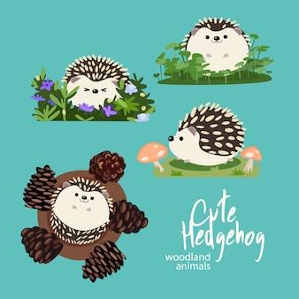 かわいいヘッジホッグウッドランド動物