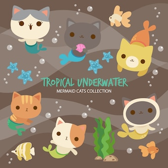 熱帯の水中人魚猫