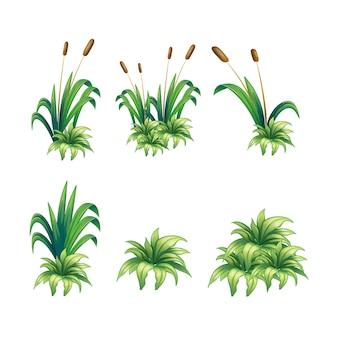 草のベクトル