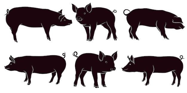 豚の手描きシルエット