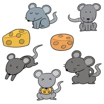 マウスのベクトルセット