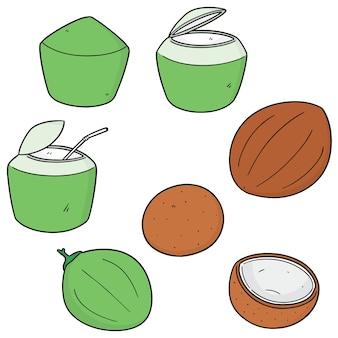 ココナッツのセット