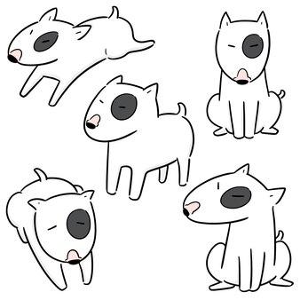 犬、ブルテリアのベクトルを設定