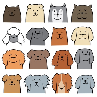 犬のベクトルを設定