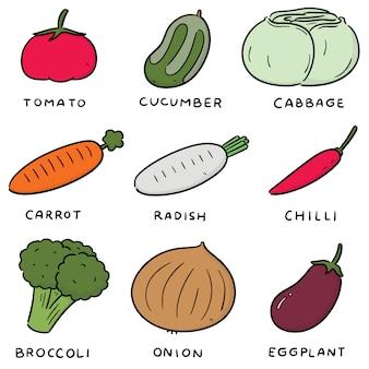 Векторный набор овощей