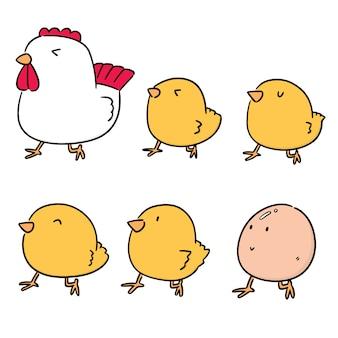Набор из курицы и яйца
