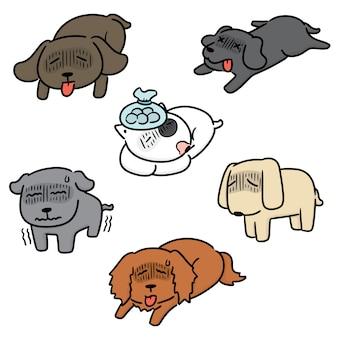 病気の犬のセット