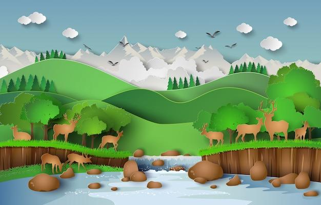 森の中の鹿
