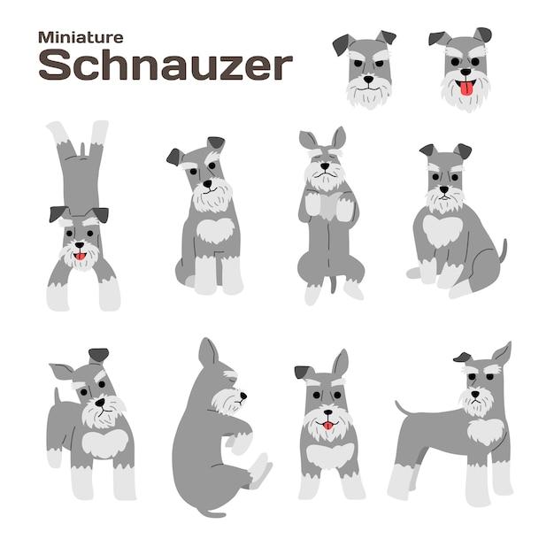 ミニチュアシュナウザーイラスト、犬のポーズ、犬の品種