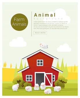 Сельский пейзаж и ферма животных фон с овцами