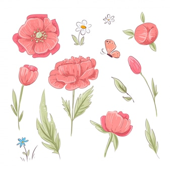 Набор красных маков и ромашек. рука рисунок. векторная иллюстрация