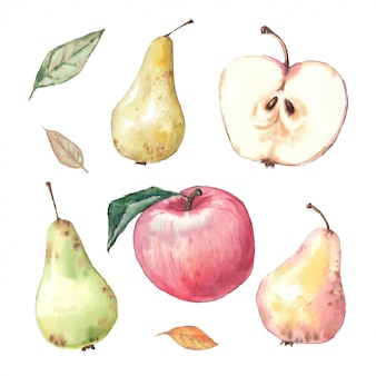 水彩手イラストリンゴと葉。