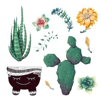 鉢植えのサボテンと多肉植物バッジコレクションセット。