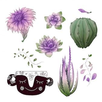 Набор для сбора значков в горшках кактусов и суккулентов.
