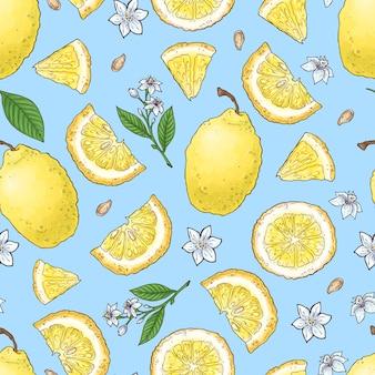 カラフルなレモンフルーツと柑橘系のアイスクリーム