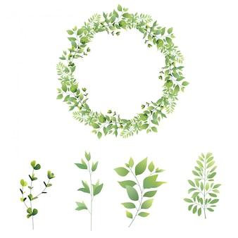 Набор коллекции зеленых листьев
