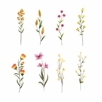 美しい花のスタイルの水彩画