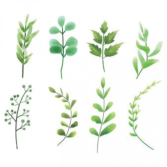 緑の葉の要素のスタイルの水彩画