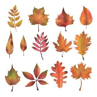 Элемент осенних листьев акварель