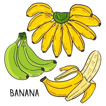 バナナベクトル。