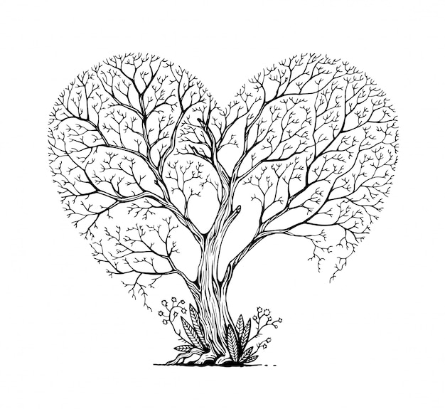 Дерево в форме сердца.