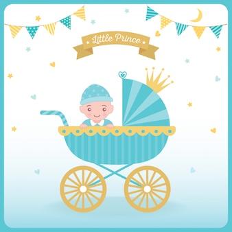 Маленькая принц коляска