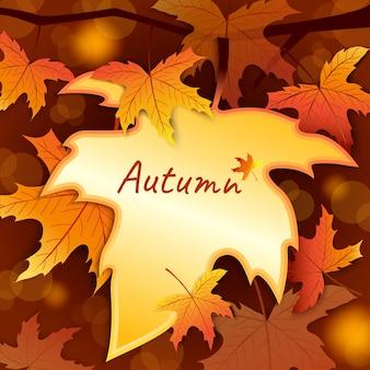 背景のボケ味を持つ秋のカエデの葉