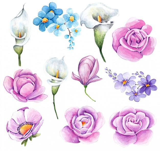 Акварель цветочная коллекция