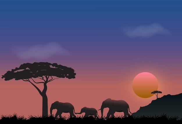 草原の自然の背景で象の家族