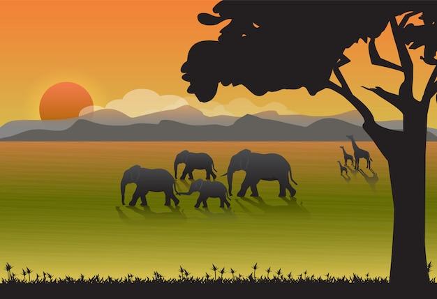Семья слонов и жирафов на лугу