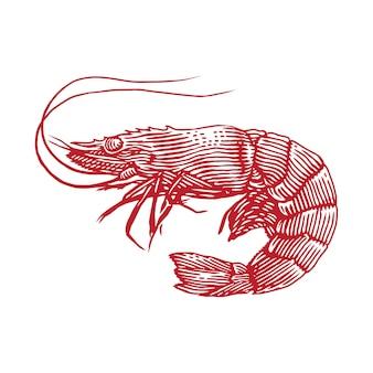 Иллюстрация гравировки креветок креветок