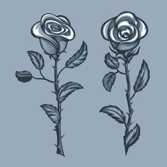Две розы с шипами