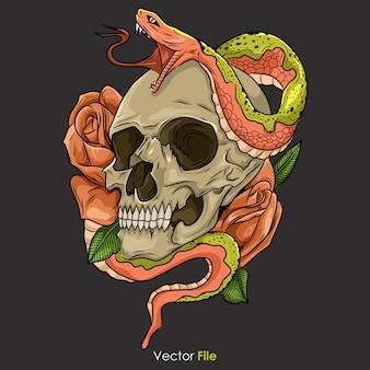 ヘビの図と頭蓋骨