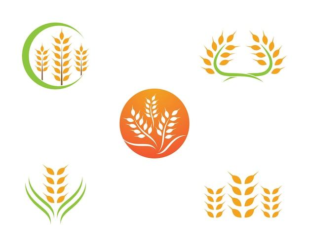 小麦ベクトルアイコン