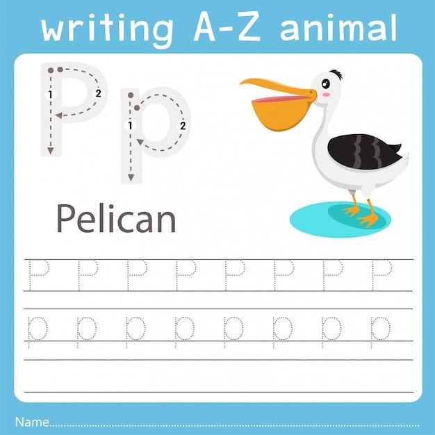 Иллюстратор, пишущий зверя из пеликана