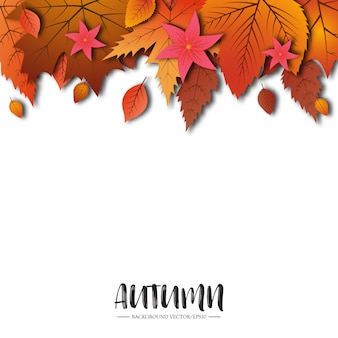 秋のテーマの抽象的な芸術的な背景。白い紙に紅葉します。