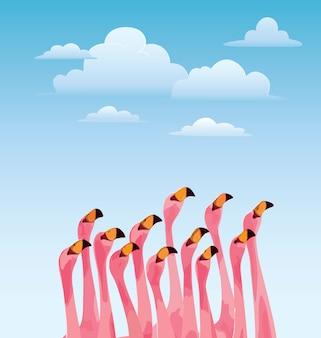 Открытка с птицей фламинго
